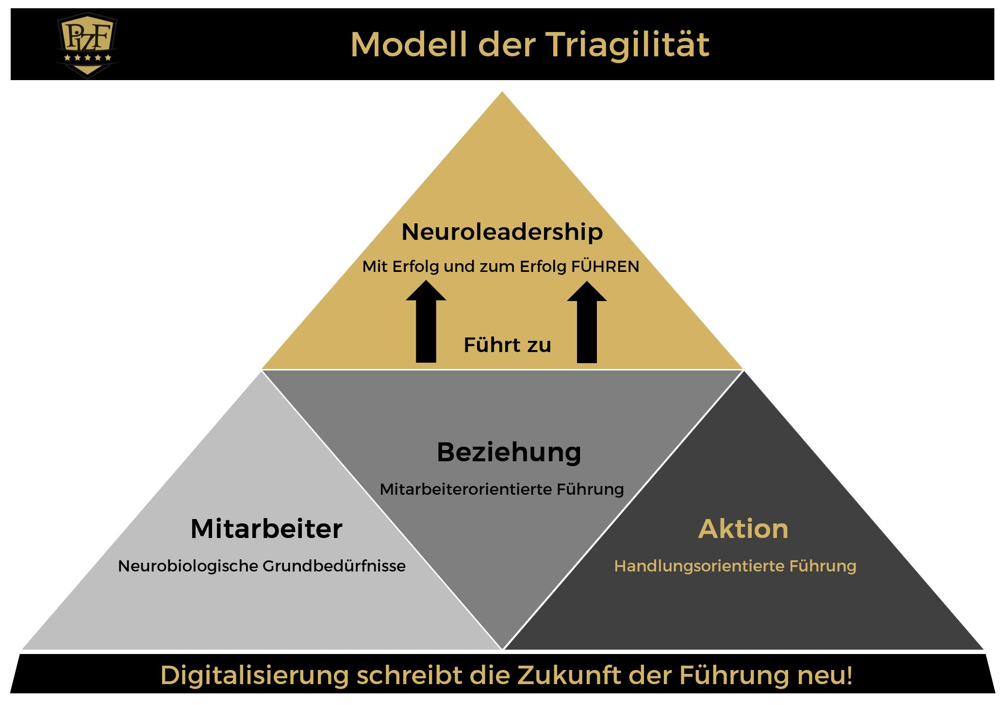 <p>… Triagile Führung bezogen auf die Parameter Mitarbeiter/Beziehung/Aktion</p>